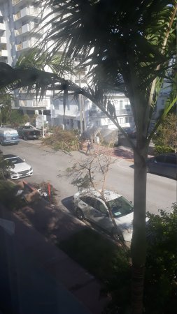 The Redbury South Beach: 20170915_091402_large.jpg