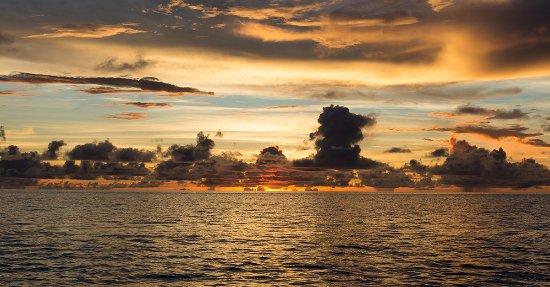 RITC - Rock Island Tour Company - Day Tour in Palau: サンセットを眺めながらのディナーやカヤックも出来ます!