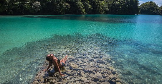 RITC - Rock Island Tour Company - Day Tour in Palau: パラオの自然を贅沢に独り占め。