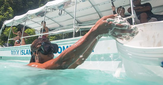 RITC - Rock Island Tour Company - Day Tour in Palau: パラオの自然が作り出す泥パック体験も。