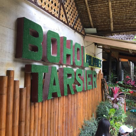Loboc, ฟิลิปปินส์: photo2.jpg