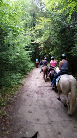 Warrensburg, NY: great well groomed trails.