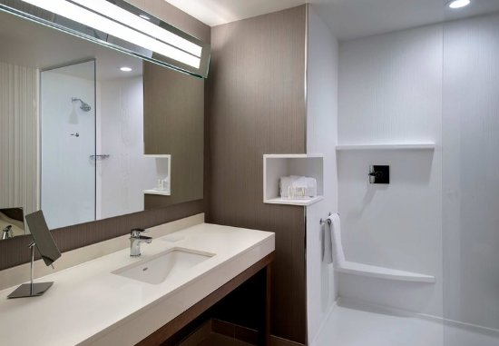 Schenectady, NY: King Guest Bathroom
