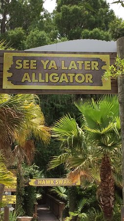 Kenansville, FL: This gave me a chuckle!