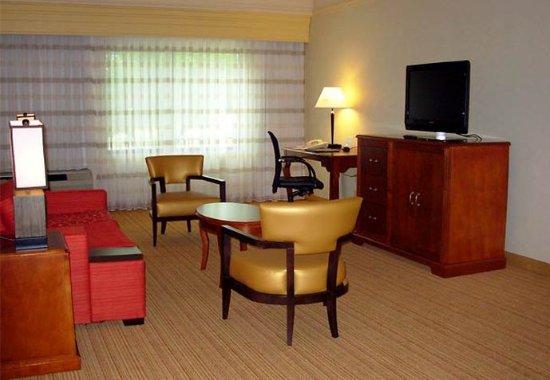 สปริงฟิลด์, เวอร์จิเนีย: Suite - Living Area