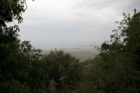 Mara West Camp: View from chalet