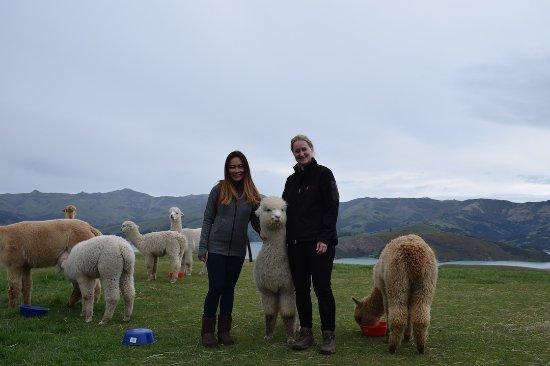 Akaroa, New Zealand: Georgina and I