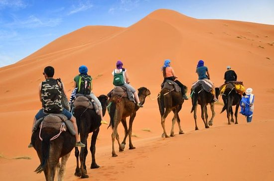 Luxury  Private 4-Day Camel Trekking...