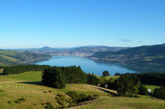 Otago Peninsula Scenic und City...