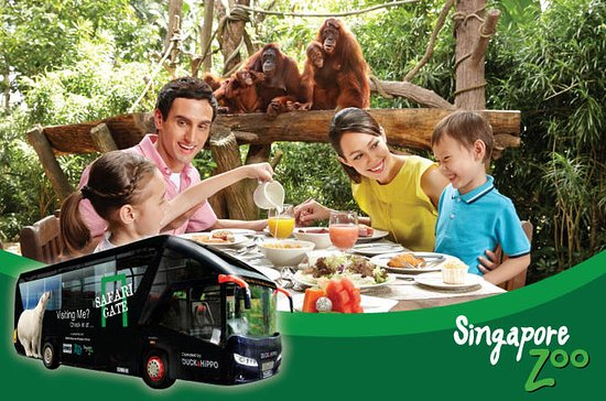 Singapore Zoo with Breakfast-With-Orangutans Upgrade Option