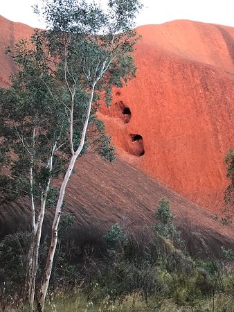 Car Hire Uluru Tripadvisor