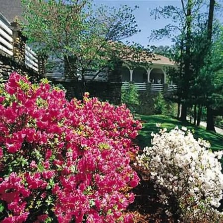 Pine Mountain State Resort Park: Exterior