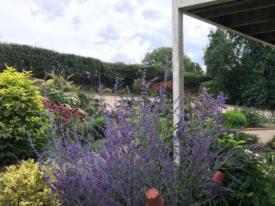Oddington, UK: Garden