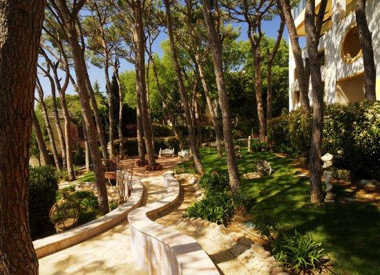 Broummana, Liban: Quartier 1 - Pinede