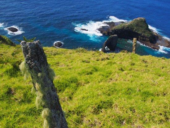 Isla Norfolk, Australia: bird rock