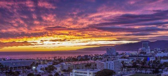 Le Meridien Delfina Santa Monica: Hotel View of Santa Monica Shoreline