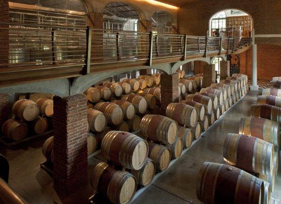 Sheraton Miramar Hotel & Convention Center: ViñaMar Wine Cellar