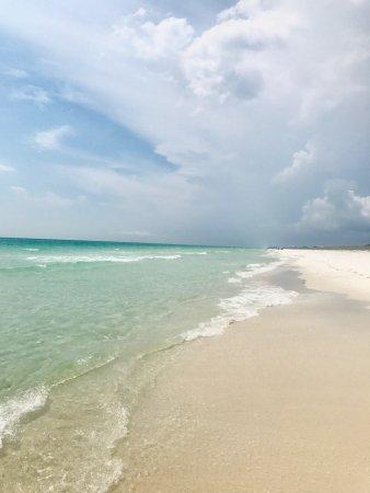 Grayton Beach Florida Reef