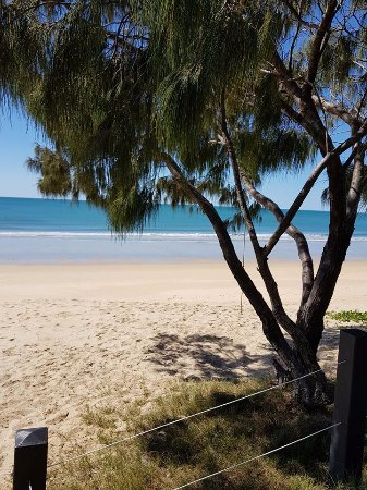 Woodgate, Australia: The beach right across the road from the Caravan Park