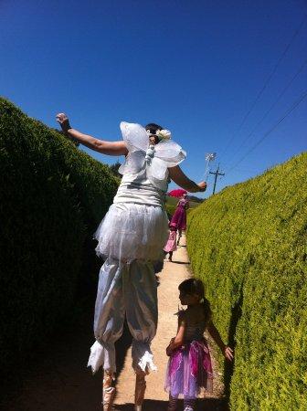 Mintaro, Австралия: Fairy, Elf & Pixie Picnic.