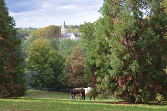 Latille, Frankrike: Vue sur l'église de Latillé depuis le parc