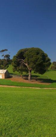 Tanunda, Australia: photo2.jpg