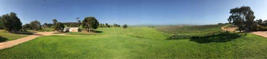 Tanunda, Australia: photo4.jpg