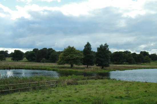 Knutsford, UK: Mere in Tatton Park