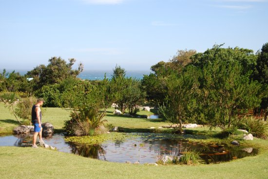 Betty's Bay, Sudáfrica: Seaview and plenty of discover for children and adults.