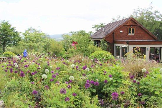 Blessington, Irlanda: Hunting Brook Gardens
