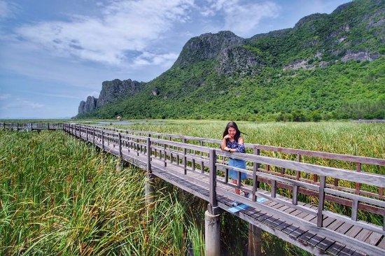 Sam Roi Yot, Tailandia: บริเวณบึงบัว