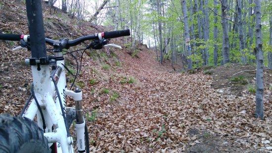 Valcea County, Rumania: suitable for hikers & bikers
