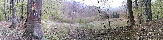 Valcea County, Rumania: magnificent landscape