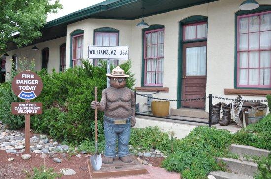 Williams, AZ: Smokey the Bear!