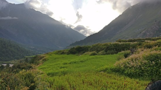 Sangla, Ινδία: Lush green landscape, Chitkul