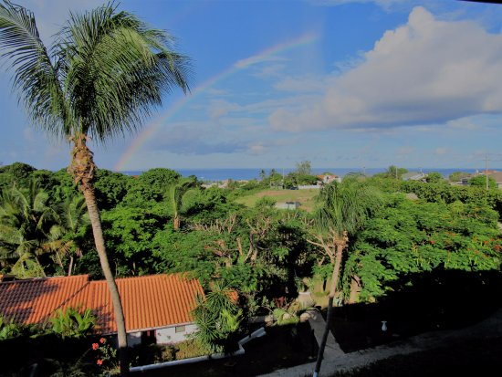 Sugar Cane Club Hotel & Spa: View from room