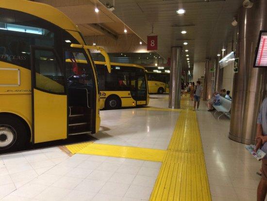 Bus Mallorca : автовокзал