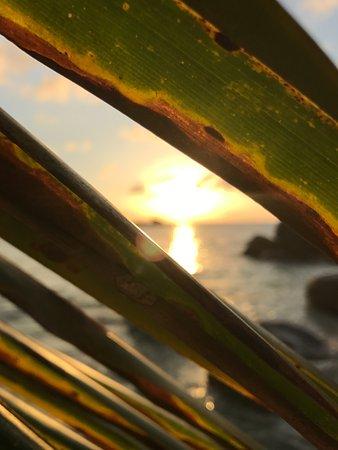 Constance Lemuria : tramonto