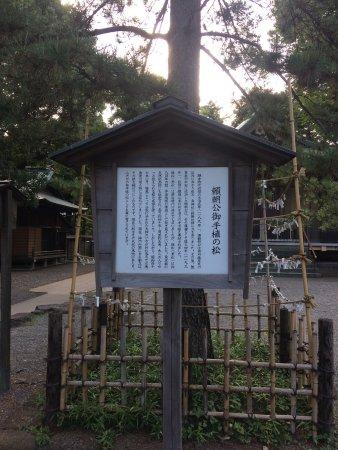 Suginami, Japón: photo8.jpg