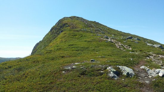 Buskerud, Noruega: the way up to the top
