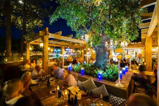 Oak garden grill nueva andalucia restaurant reviews - La sala nueva andalucia ...