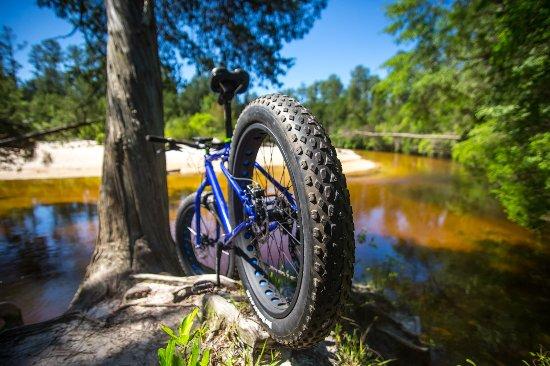 Hamilton Mountain Bike Tours & Rentals