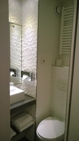 Hotel Les Jardins de Montmartre: vue sur les toilettes de la salle de bain