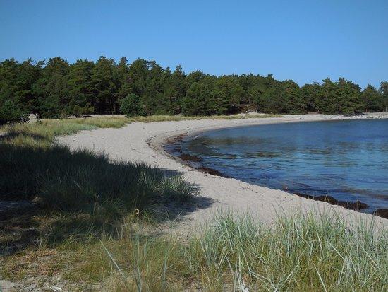 Nattaro Island, Sweden: Sandstranden vid Storsand