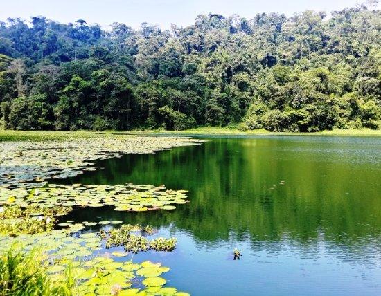 Σάντα Άνα, Κόστα Ρίκα: Laguna de Hule near La Paz Waterfall