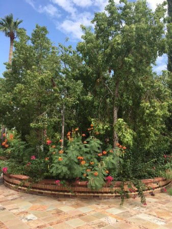 Florence, AZ : Butterflies were abound amidst blooming flowers Several fountains in shaded peace resting areas