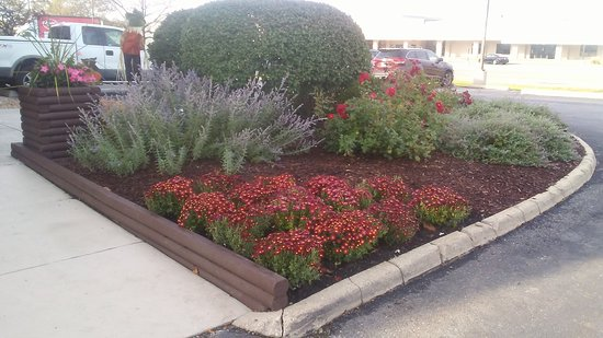 Red Roof Inn Chicago Downers Grove: Ready For Fall