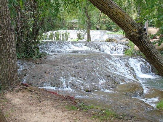Nuévalos, España: En ciertos lugares hay truchas, la comida se puede coger en la entrada al parque