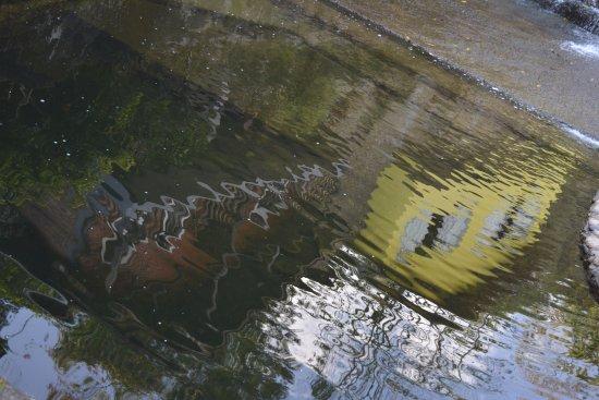 Piscina com gua natural do rio macacu picture of for Agua piscina