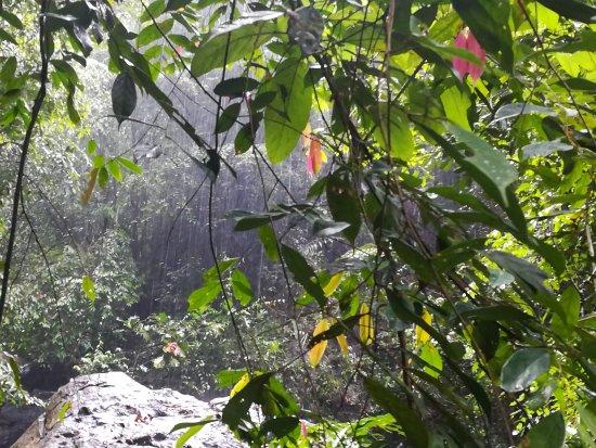 Ratnapura, Sri Lanka: Katugas Ella Falls